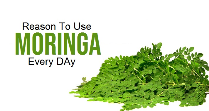 Reasons To Use Moringa Everyday