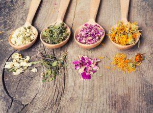 Healing Herbs, Herbs, Herbal Treatment, Diabetes, Boost Immune System, immune booster