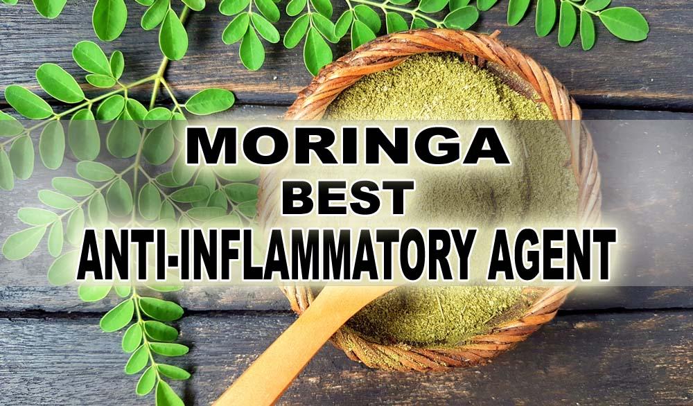 Moringa Tea, Moringa Juice, Moringa Health Benefits, Moringa, Beneficial Plant, Herbs, Herbal Products