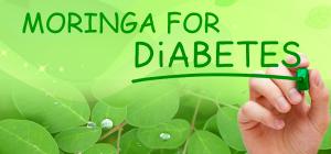 Moringa for Diabetes, Benefits Of Moringa For Diabetes, Moringa for Diabetes Treatment, Diabetes, Type 1 Diabetes, Type 2 Diabetes, Benefits of Moringa, Moringa, Moringa powder, Herbs, Herbal Product