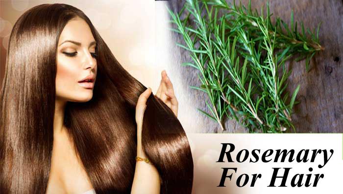 Herbal Remedies For Hair Loss, Hair Loss , Bad Hair Health, Hair Loss Products, Hair Products, Anti-hair Loss, Prevention Of Hair Loss, Treating Hair Loss, Hair Pigments, Hair Growth, Scalp Health, Hair Fall, Hair Growth, Herbal Products