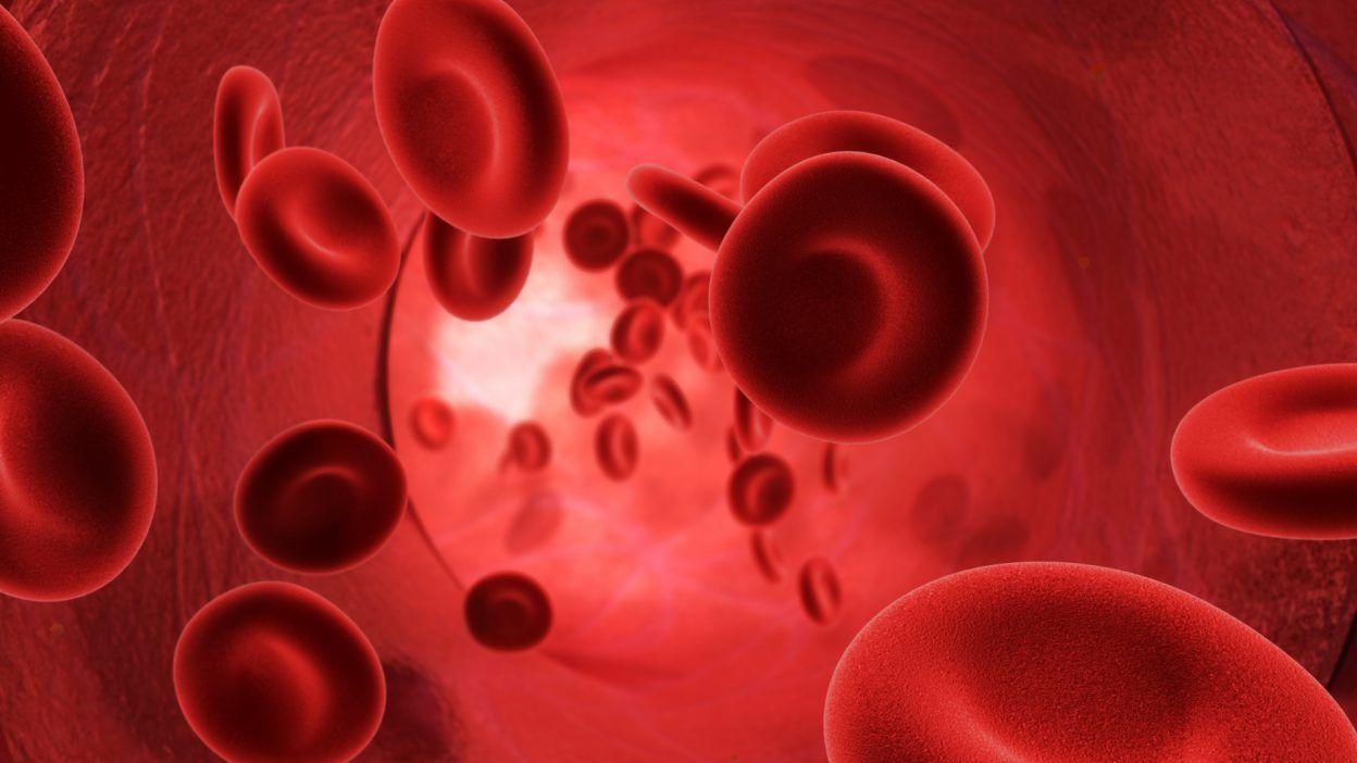 Improve Blood Circulation, cholesterol, blood level, herbal treatment